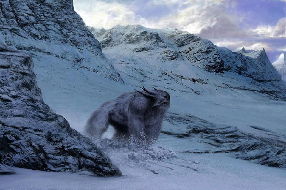 Mysterious Footprint of Yeti Sighted in the Nepal Himalaya