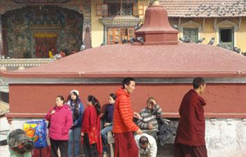 Lhasa City Cultural Tour