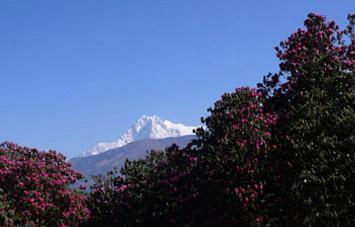 Khayar Lake Trekking (Khopra Danda Trek) in Annapurna